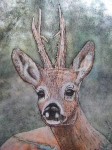 reebok - brandschilderwerk, detail, hoe mooi de ogen!