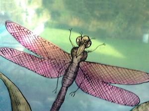 libelle - brandschilderwerk