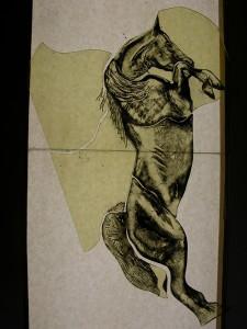 paradepaard, in de eerste verf laag van 't brandschilderen. Voor de tijd het glas al in vorm gesneden zodat t goed passend is voor t lood.
