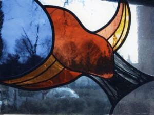 vogel, stilte centrum Casa Bonita, eigen ontwerp Veronica